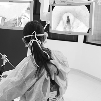 Curso de Cirurgia Minimamente Invasiva do Esôfago